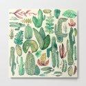 cactus and nature by franciscomffonseca