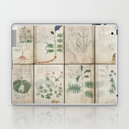 The Voynich Manuscript Quire 1 - Natural Laptop & iPad Skin