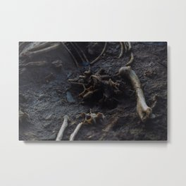 Remains of a Bygone Predator, Scatter Metal Print