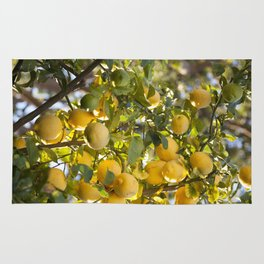 The Lemon Tree Rug