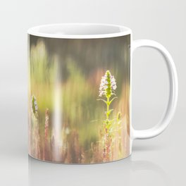 Sunlight morning at the garden Coffee Mug