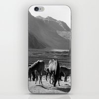 horses iPhone & iPod Skins featuring Horses by Avigur