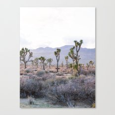 Joshua Tree Diptych [Right Side] Canvas Print