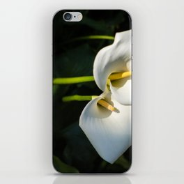 Close-up of Giant White Calla Lily iPhone Skin