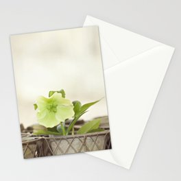 Heavenly Hellebore Stationery Cards