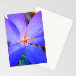 Springtime Flowers Stationery Cards