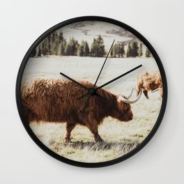 Highland Cow Scottish Cattle Photograph Wall Clock