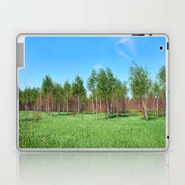 Beautiful young forest in summer day Laptop & iPad Skin