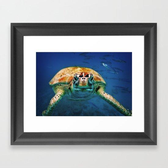 Bajan Turtle Framed Art Print