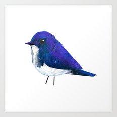 Ultramarine Flycatcher Art Print