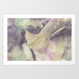 Angel's Trumpet Art Print