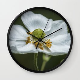 Graceful Anemone Closeup Wall Clock