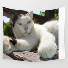 Black and White Bicolor Cat Lounging on A Park Bench Wall Tapestry