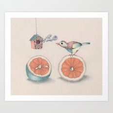 Citrus Bird Art Print
