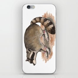 Snuggly Sock Raccoon iPhone Skin