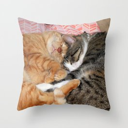 Nap Buddies Throw Pillow