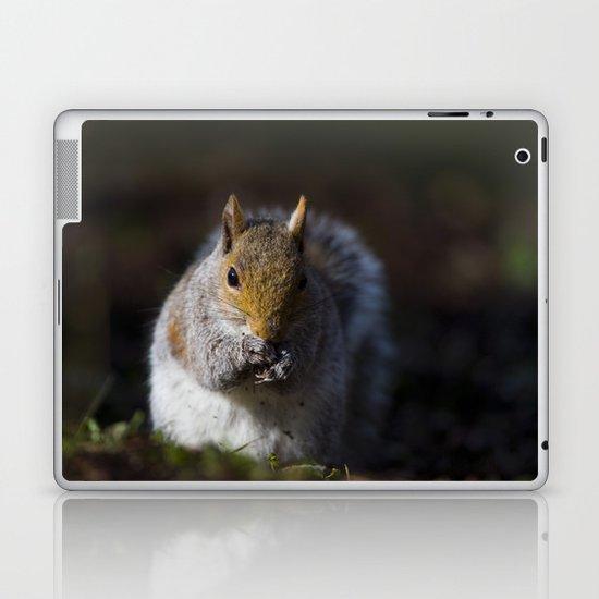 GREY SQUIRREL FORAGE Laptop & iPad Skin