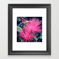 Botanicals  Framed Art Print
