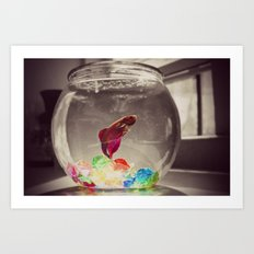 fishbowl Art Print