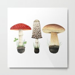 Three Mushrooms Metal Print