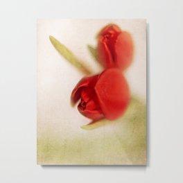 Tulip 2 Metal Print