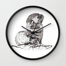Baby Seal Wall Clock
