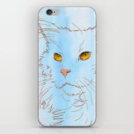 Magnificent Maine Coon iPhone Skin