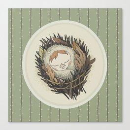 Sleeping Salix Canvas Print