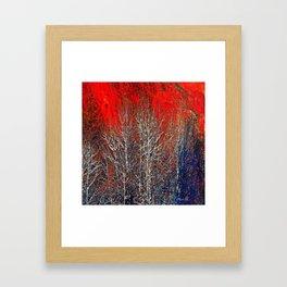 White Trees Framed Art Print