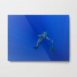 Hawaiian Shark III Metal Print