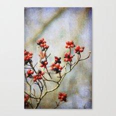 Winter Berries Canvas Print
