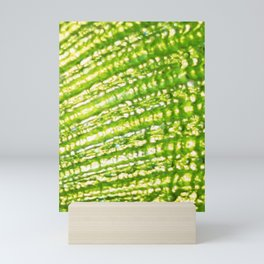 Seashell- Texture Lime Green Palettte Mini Art Print