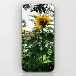 Southside Sunflowers iPhone Skin
