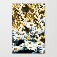 Dynamite Daisies Canvas Print