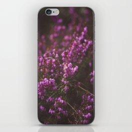 Purple Little Flowers in My Garden iPhone Skin