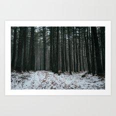 DOUGLAS STATE FOREST Art Print