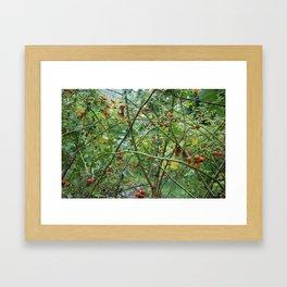 Red berry tangle Framed Art Print