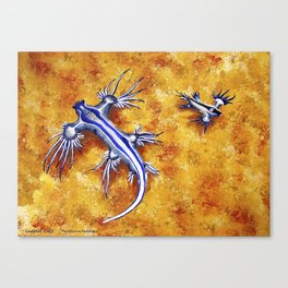 The Glaucus Buddies Canvas Print