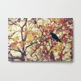 autumn transitions Metal Print