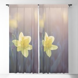 Time for Daffodils Blackout Curtain