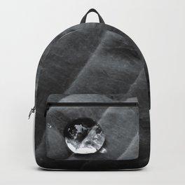 Hypno Hosta II Backpack