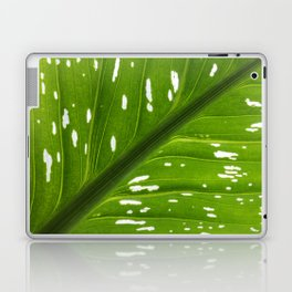 Spotted with White: Leaf Laptop & iPad Skin