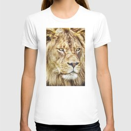 Lion Canvas Print, Photographic Print, Art Print, Framed Print, Greeting Card, iPhone Case, T-shirt