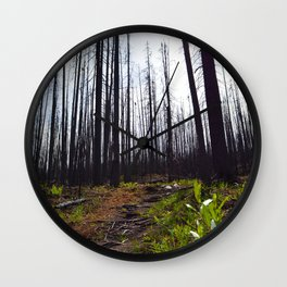 Excelsior Wildfire in the Maligne Valley, Jasper National Park, CA Wall Clock