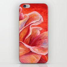 Rose Flower Bud iPhone & iPod Skin
