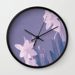 Narcisus Wall Clock
