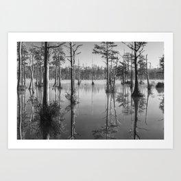 Adams Mill Pond 53 B&W Art Print