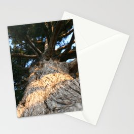 Grounded by Meredith Scrivner Stationery Cards