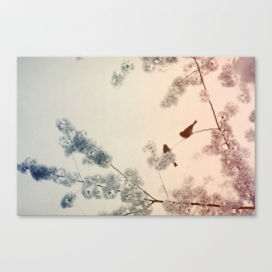 Central Park In Bloom #4 Canvas Print