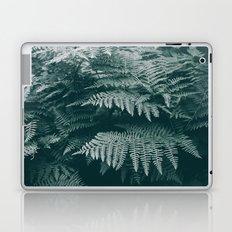 Ferns IV Laptop & iPad Skin